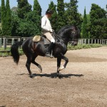 Quintas-Piaffe-2